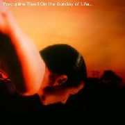 PORCUPINE TREE - ON THE SUNDAY OF LIFE (2LP)